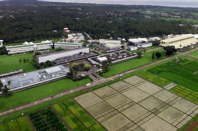 IRRI Campus Aerial Photo. Part of the image collection of the International Rice Research Institute (IRRI).