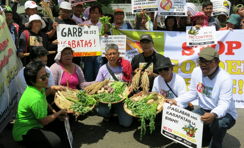 golden rice protest