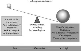 18-Spices-Scientifically-Proven-To-Prevent-and-Treat-Cancer-Factors-330x207