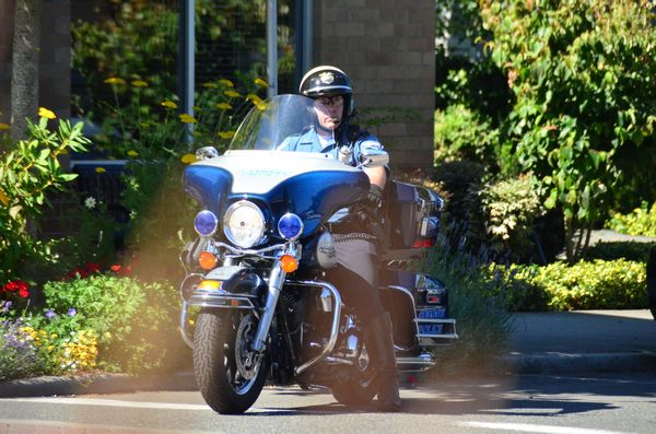 "From Larry Vogel: Edmonds police are clearly following up on their recent announcement to step up efforts to ensure pedestrian and traffic safety. This motorcycle officer, barely noticeable behind the corner plantings, was seen closely watching traffic Thursday morning at Fifth and Dayton.  Police say they will be issuing citations for failure to yield to pedestrians in crosswalks, and for motorists practicing ""California stops"" at stop signs. Here's a link to the informational flier they will be passing out to those who are stopped."