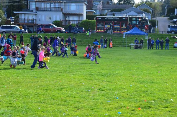 The 3- to 4-year-olds scramble for treasure as the Edmonds Rotary hunt gets underway. (Photo by Larry Vogel)