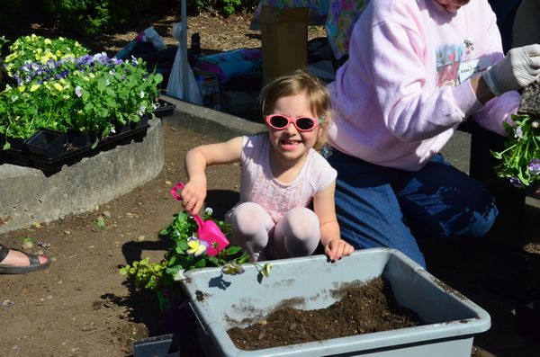 Samantha Rush, 4, of Edmonds makes sure the soil is packed just right.