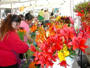 Fresh flowers at last year's summer market.