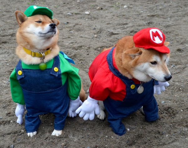 Edmonds dogs Yuki and Sakuna, posing as video game characters Mario and Luigi, were named the Best in Show.