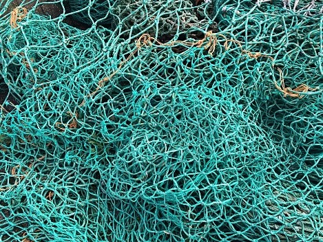 Picture of a net