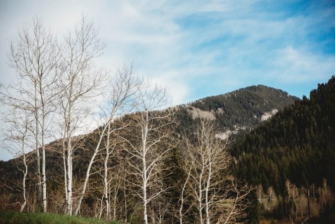mountain-elopement-5