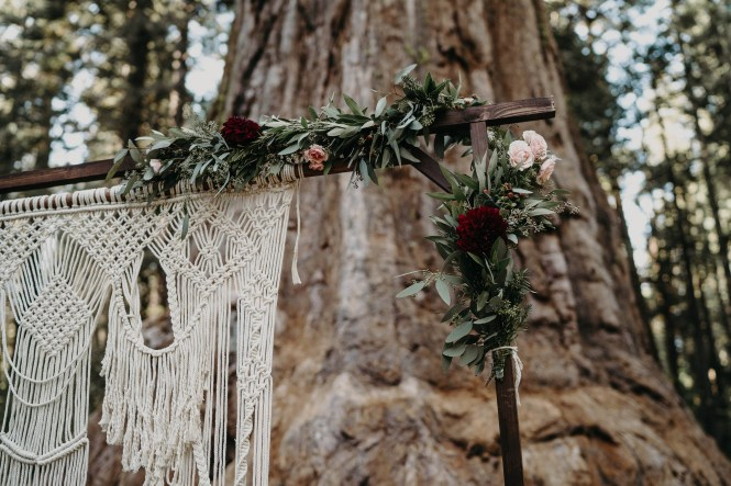 Andrea & Kevin got married at the Sentinel Tree at Big Trees State Park-10