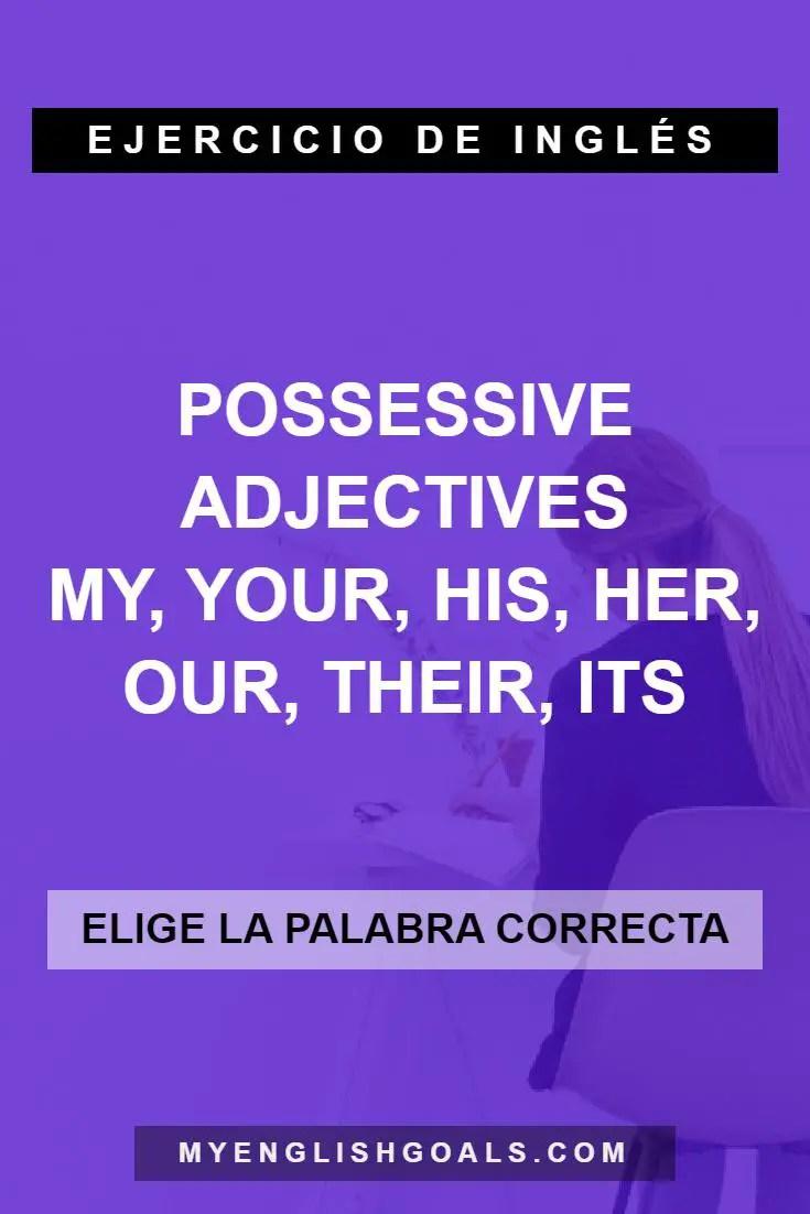 Practica los adjetivos posesivos en inglés - Possessive Adjectives (A1 Principiante)