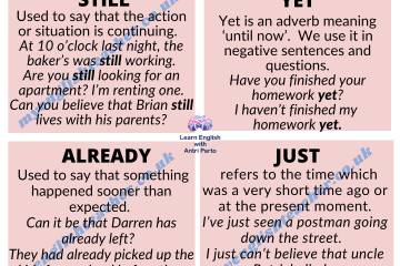 Adverbs still, yet, already, just