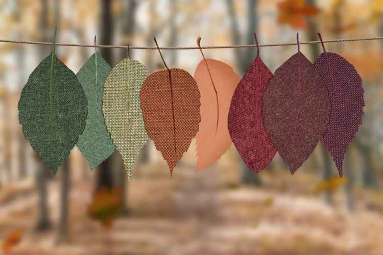 10 Idioms Related to Autumn