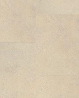 VV016 01859 Corvus