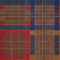 Tartan Day Carpet Tiles by JOY - 1 Color - Myers Carpet ...