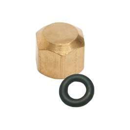 Bleeder Valve Cap with Gasket