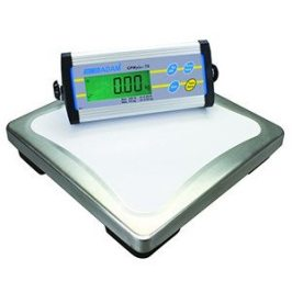 CPW Series Weighing Scale