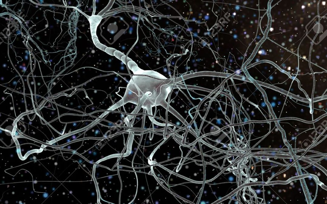 Alzheimer's Neuropathology: Neuroinflammation in Patients Exemplifies the Presence of Both a Neuronal and Immunological Response