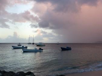 Fishing skiffs and pleasure boats