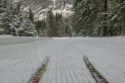 Skate skiing near Mazama