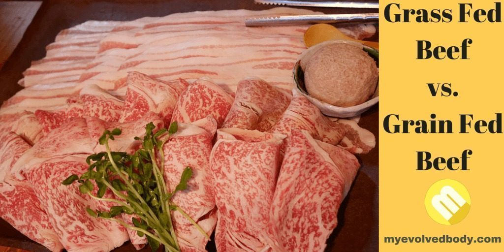 Grain Finished Beef Raised Care