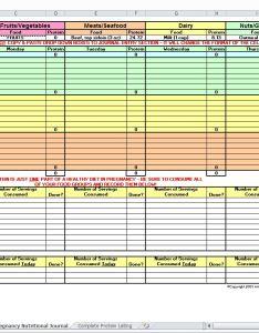 also pregnancy diet spreadsheet template rh myexceltemplates