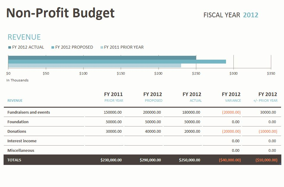 Non Profit Budget Spreadsheet Non Profit Budgeting