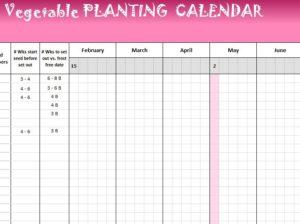 Vegetable Planting Calendar  My Excel Templates