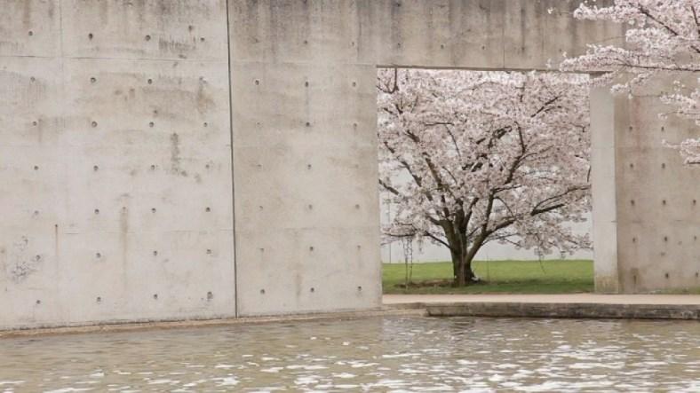 Tadao Ando-Langen Foundation, Neuss, 2004.4jpg