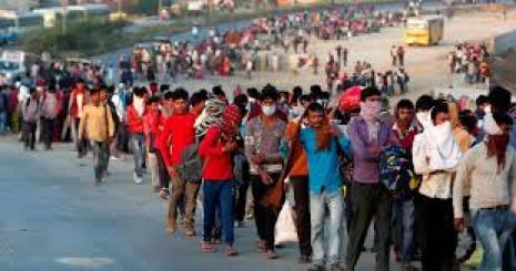 Migrants In India Are The Only Voters Or Pillar Of An Economy?