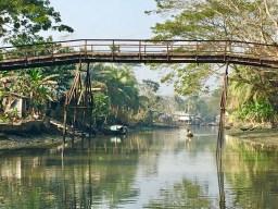 One rare Bangladesh