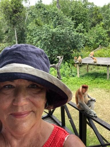 Labak Bay Proboscis Monkey Reserve