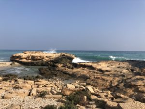 Beautiful Oman beaches