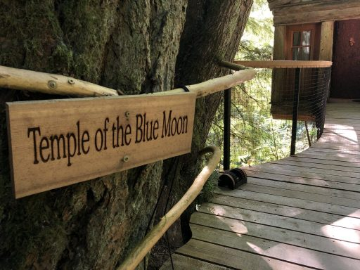 Temple of the Blue Moon at Tree House Point