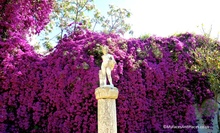 A lush cascade of pink bougainvillea in the Casa de Pilatos garden in Seville.