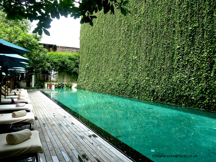 The swimming pool is flanked by an impressive wall of hanging money plants in 137 Pillars House
