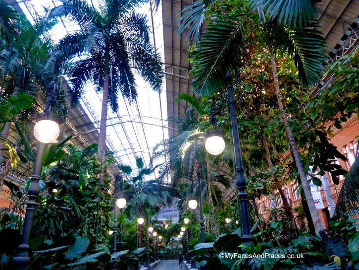 Tropical garden in Atocha railway station