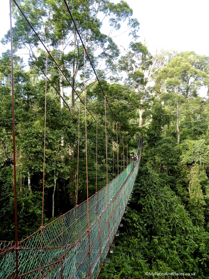 Take a wobbly walk on the wild side on the Treetop Canopy Walkway - in Sabah