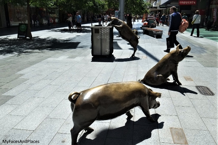 Bronze Pig statues at Rundle Mall