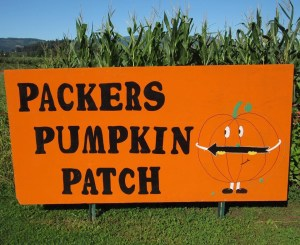 packer orchards pumpkin patch
