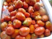 more tomato