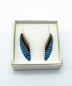My Fancy Feathers Earrings, jay feathers.