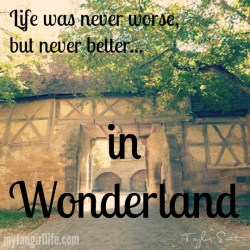 Taylor Swift 1989 Lyrics - Wonderland 3