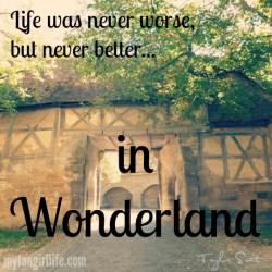 Taylor Swift 1989 Lyrics - Wonderland 3