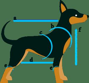 схема измерения мерок домашнего животного для изготовления одежды