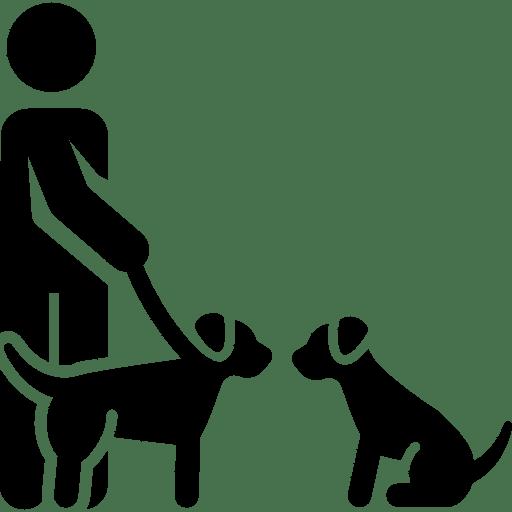 Научит ладить с другими собаками