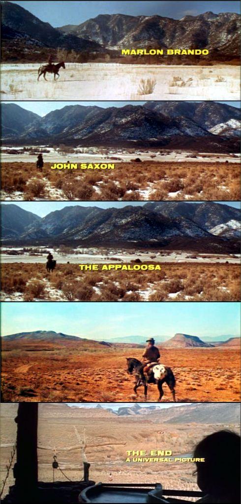 The Appaloosa (1966)