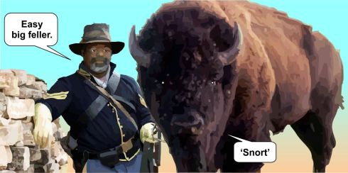 BUFFALO SOLDIER and Steed