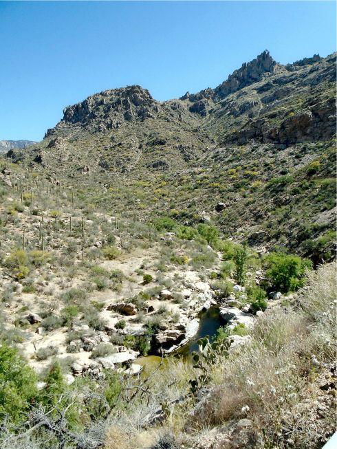 Sabino Canyon water
