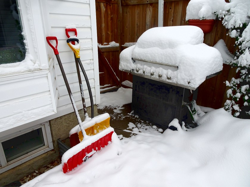 That's my new shovel. The red one. Has a wider blade.