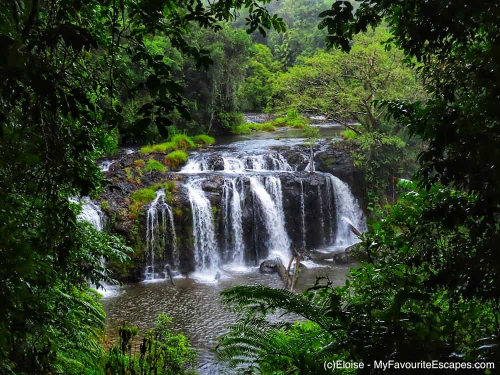 Cairns Waterfalls Circuit self-drive itinerary: pick the falls without the crowd