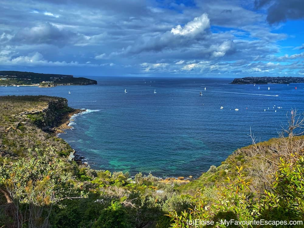View of Dobroyd Head from Manly to Spit Bridge Coastal Walk