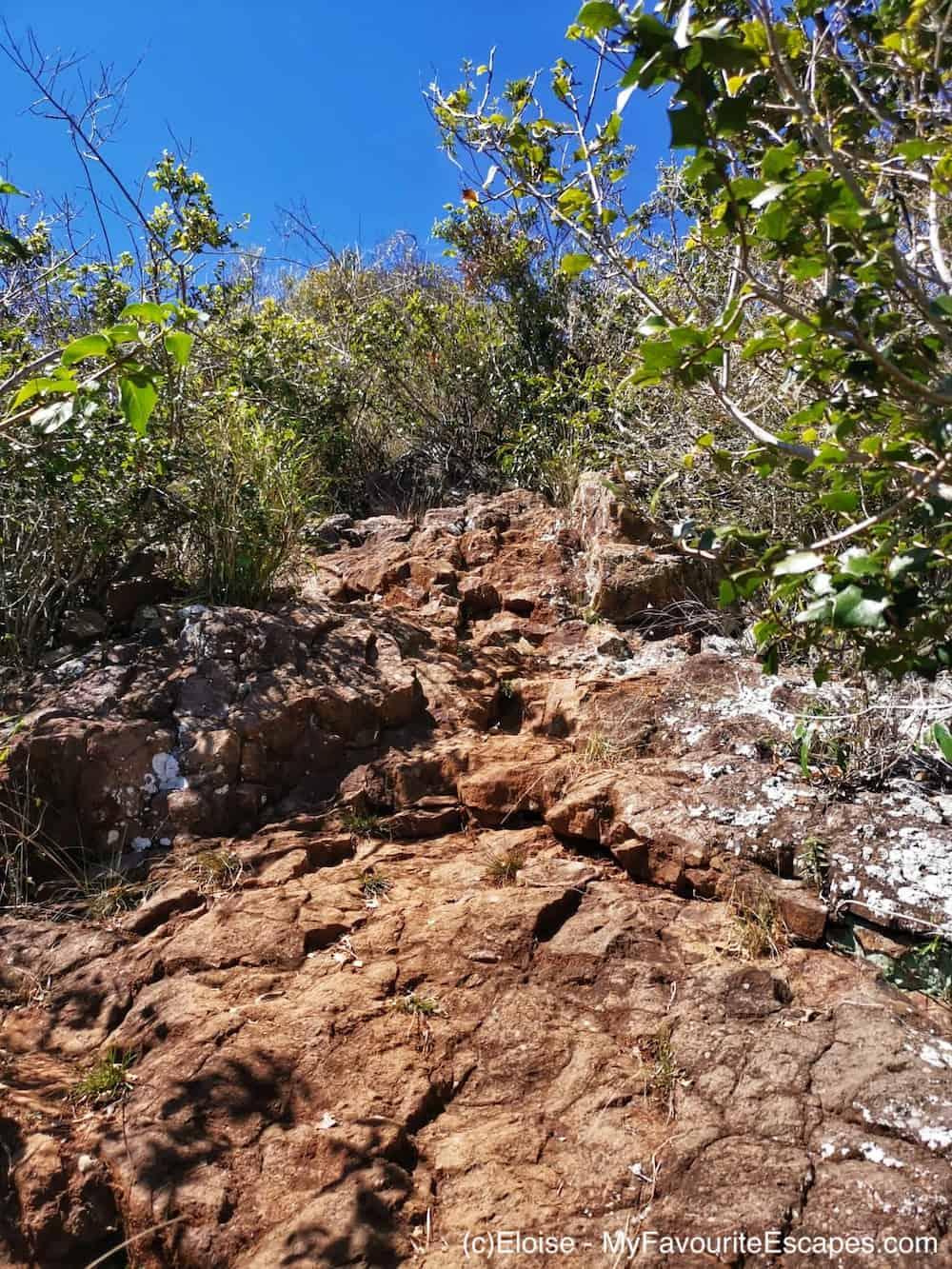 Steep path Mount Blaine Summit Track